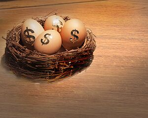 eggs with dollar signs sitting in nest