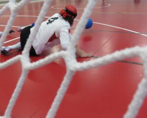 goalball net